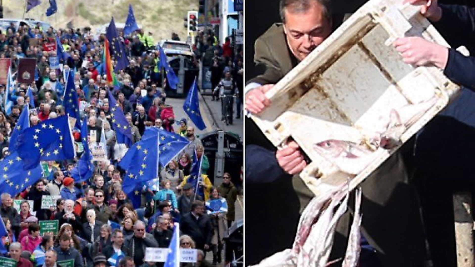 Pro-EU regional rallies across the country received little media attention, whereas Nigel Farage's fish protest was covered everywhere. (Photographs: PA) - Credit: Archant