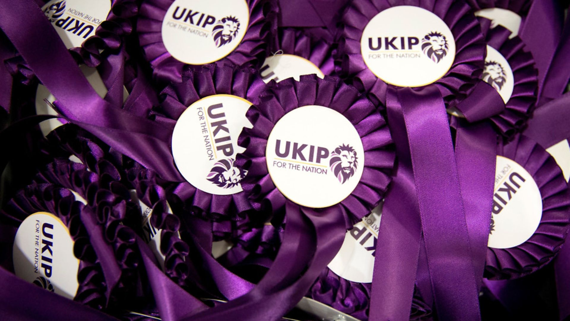 UKIP rosettes - Credit: Getty Images