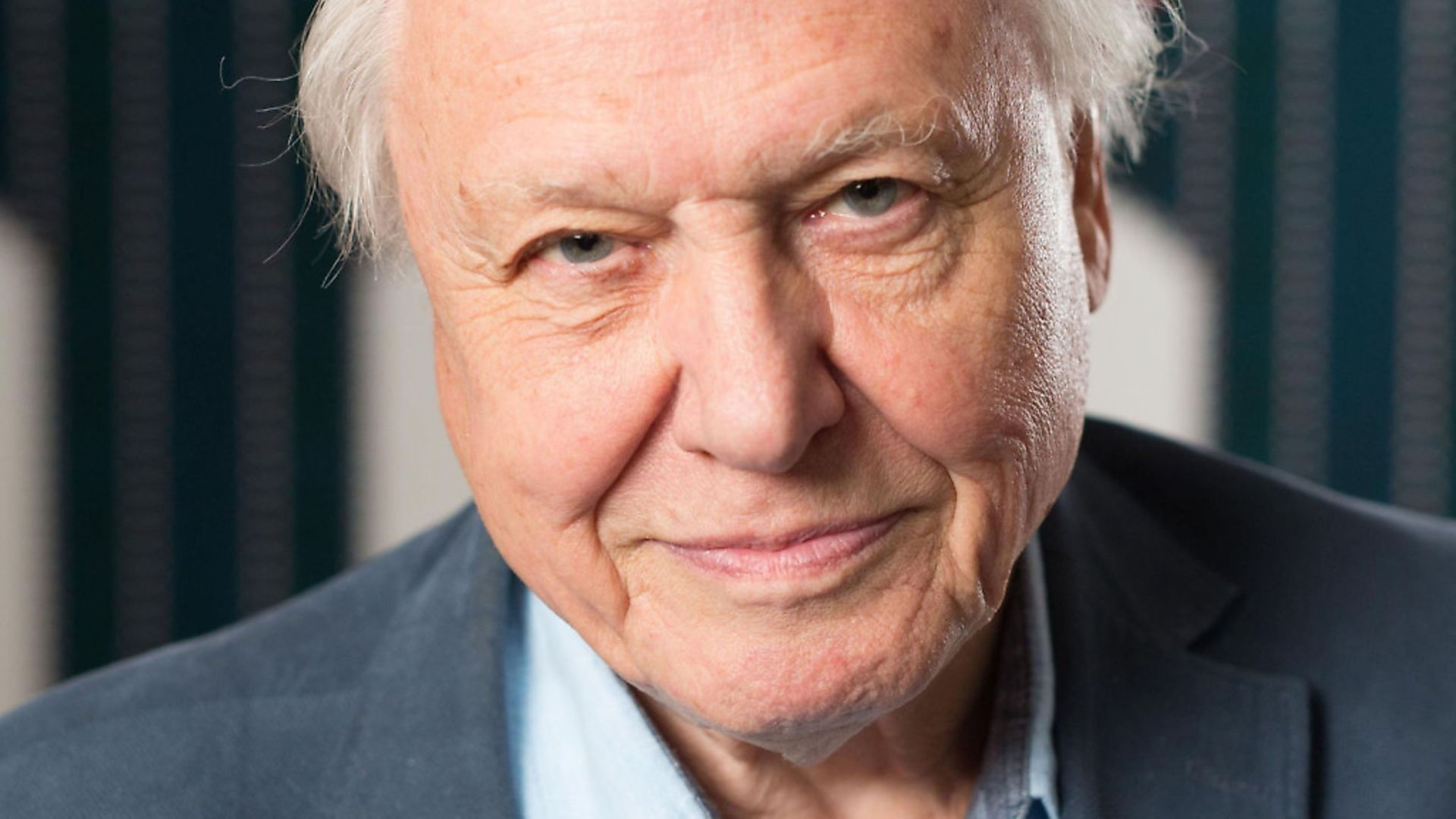 Sir David Attenborough as been told to desist from making any more disparaging comments about Brexit - Credit: PA Wire/PA Images