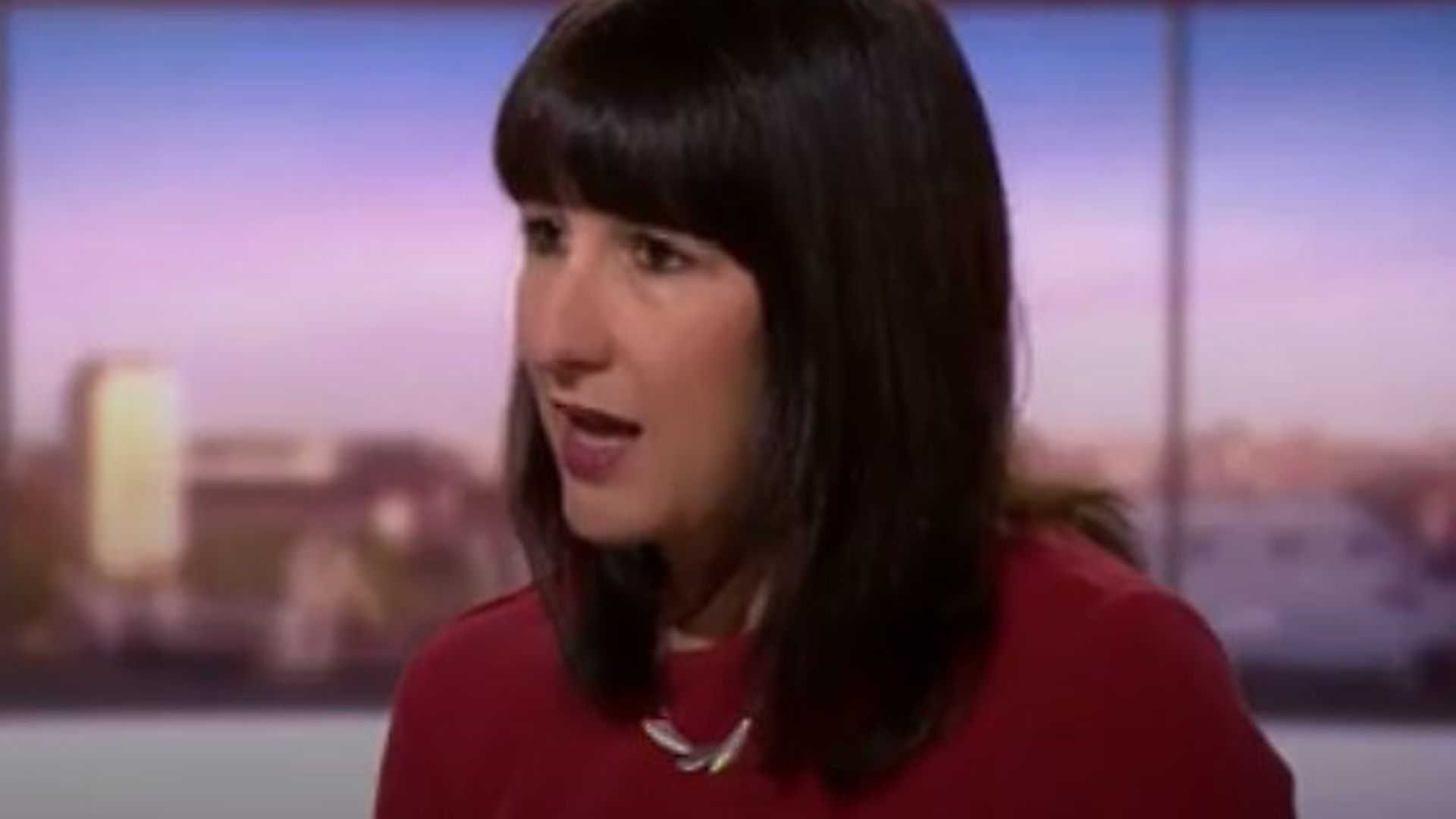 Rachel Reeves, Keir Starmers shadow cabinet minister. Photo: BBC One. - Credit: BBC One