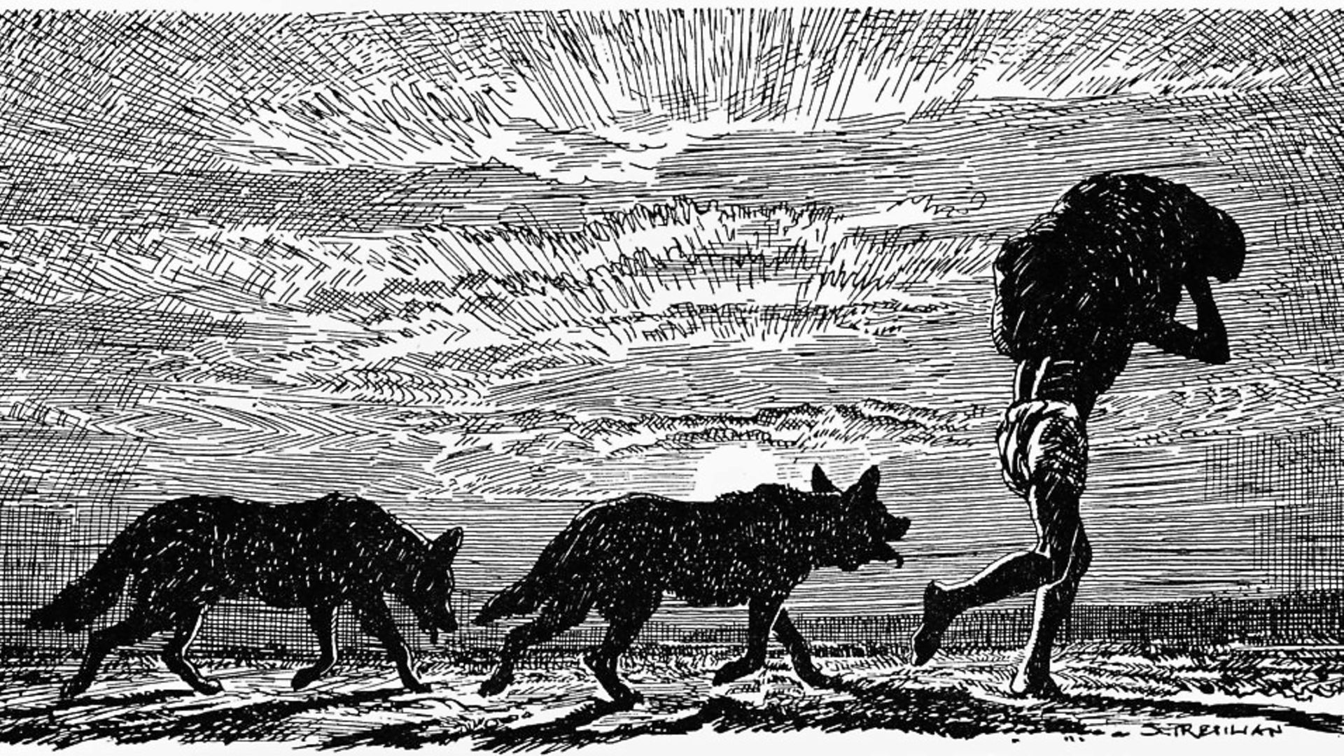 'Mowgli, with two wolves at his heels and a bundle on his head'. Photo by Culture Club/Getty Images. - Credit: Getty Images