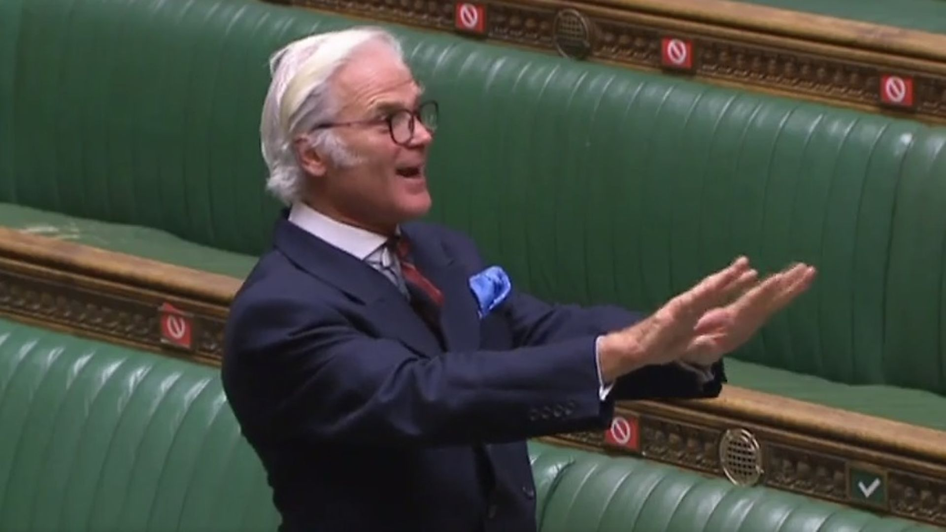 Tory Brexiteer MP Desmond Swayne in the House of Commons - Credit: Parliament TV