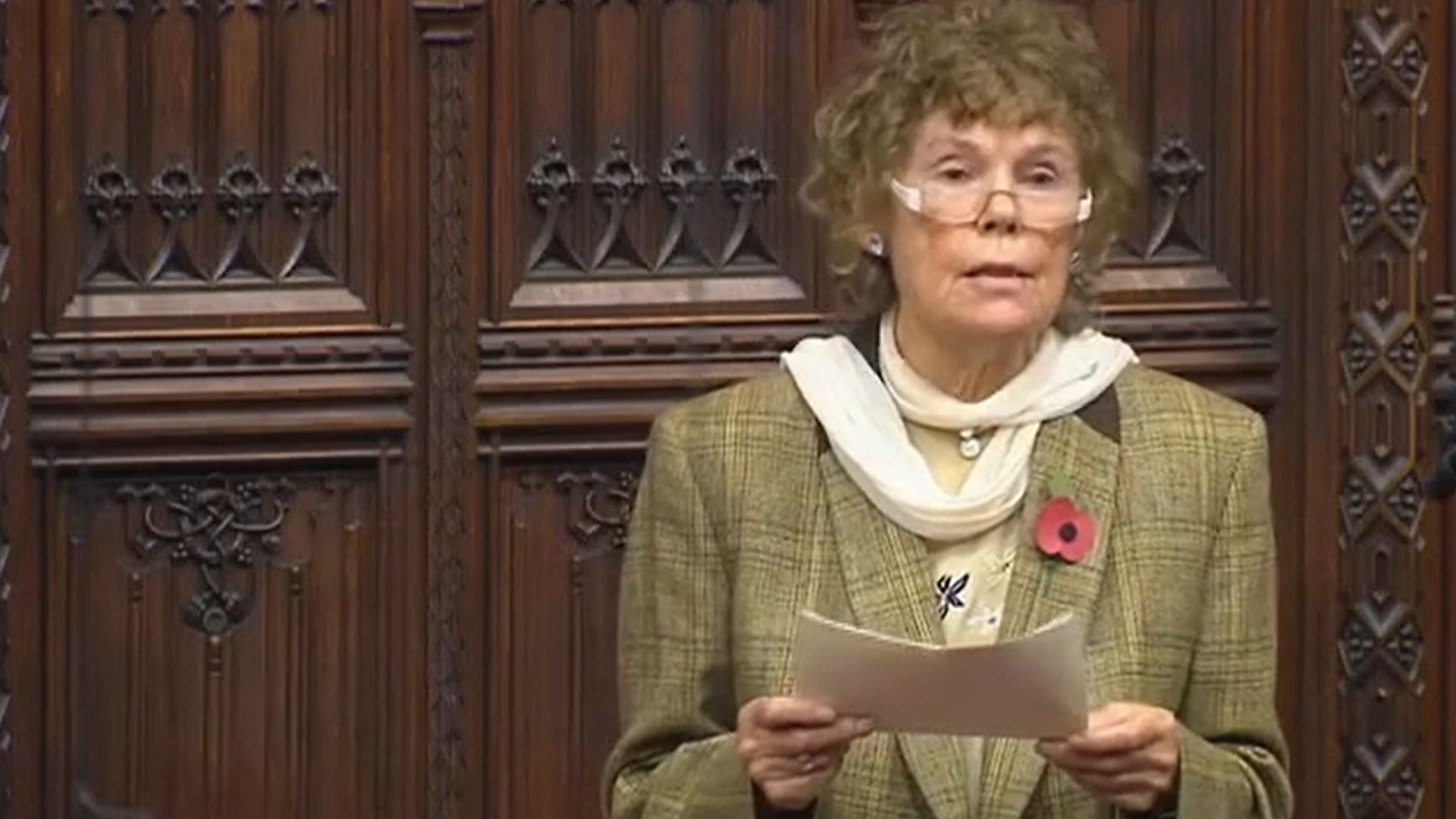 Kate Hoey in the House of Lords - Credit: Parliament Live