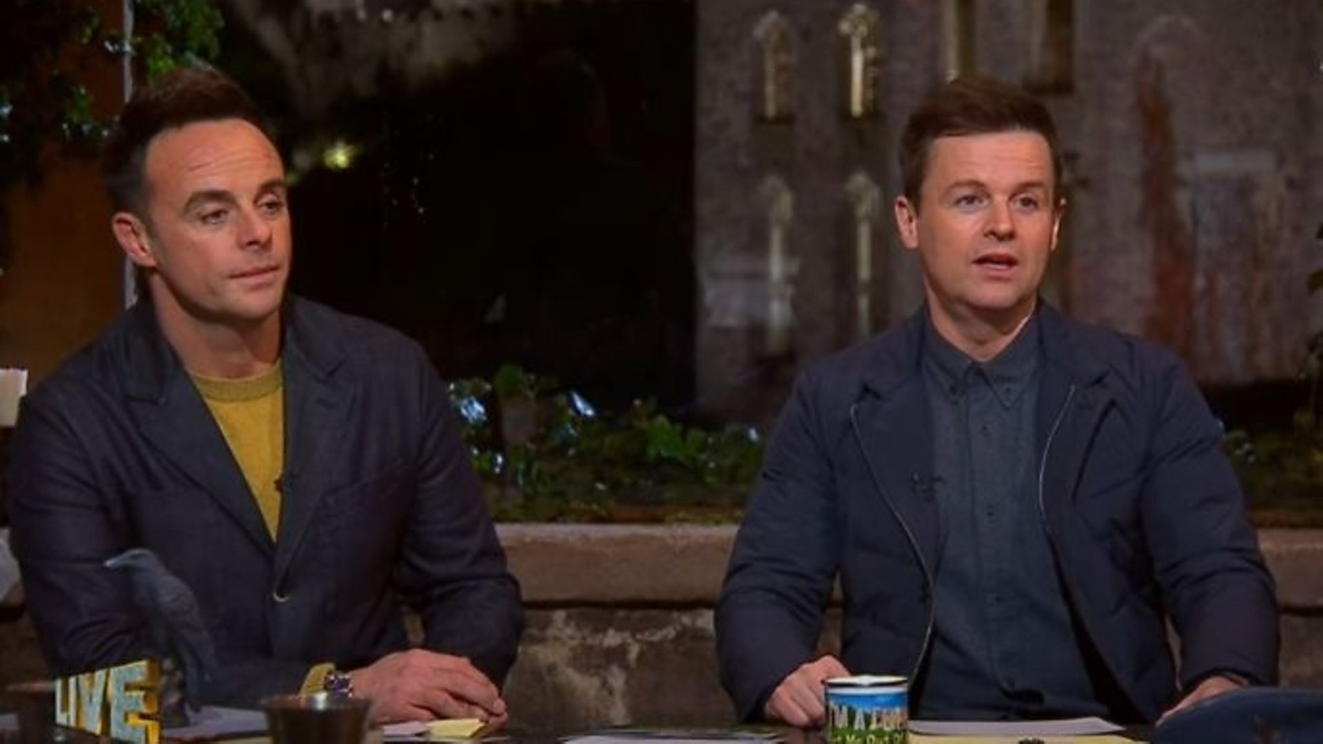 I'm A Celebrity co-hosts Anthony McPartlin and Declan Donnelly - Credit: YouTube, I'm A Celebrity... Get Me Out Of Here!