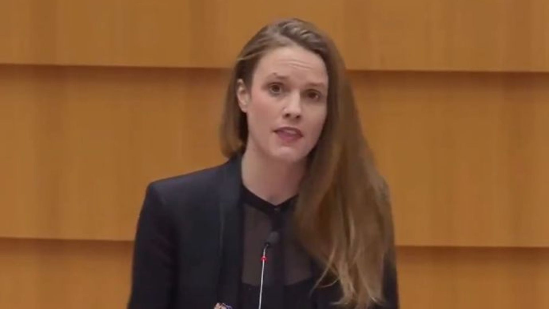 German MEP Theresa Reintke - Credit: Twitter