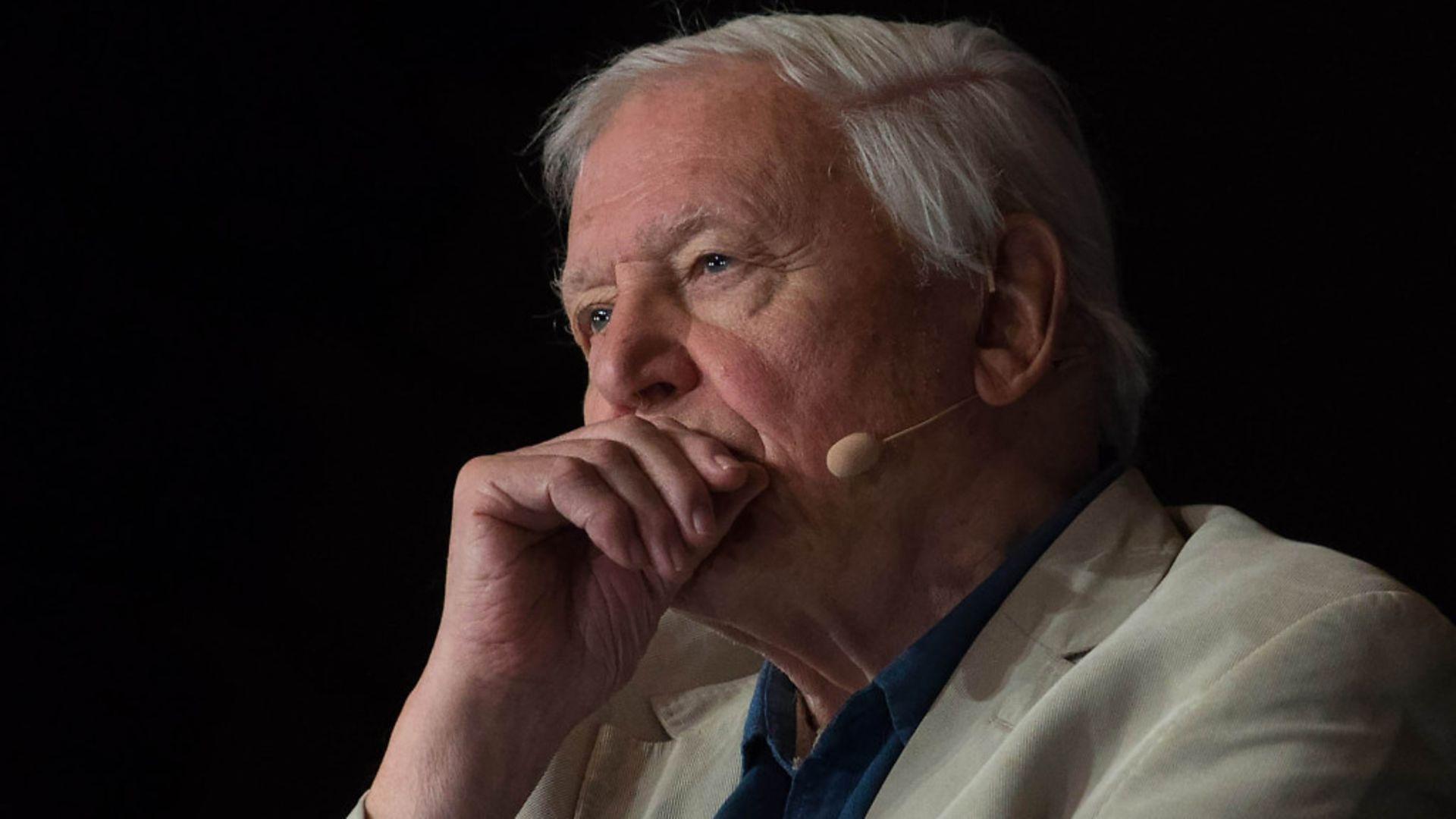 David Attenborough - Credit: PA Wire/PA Images