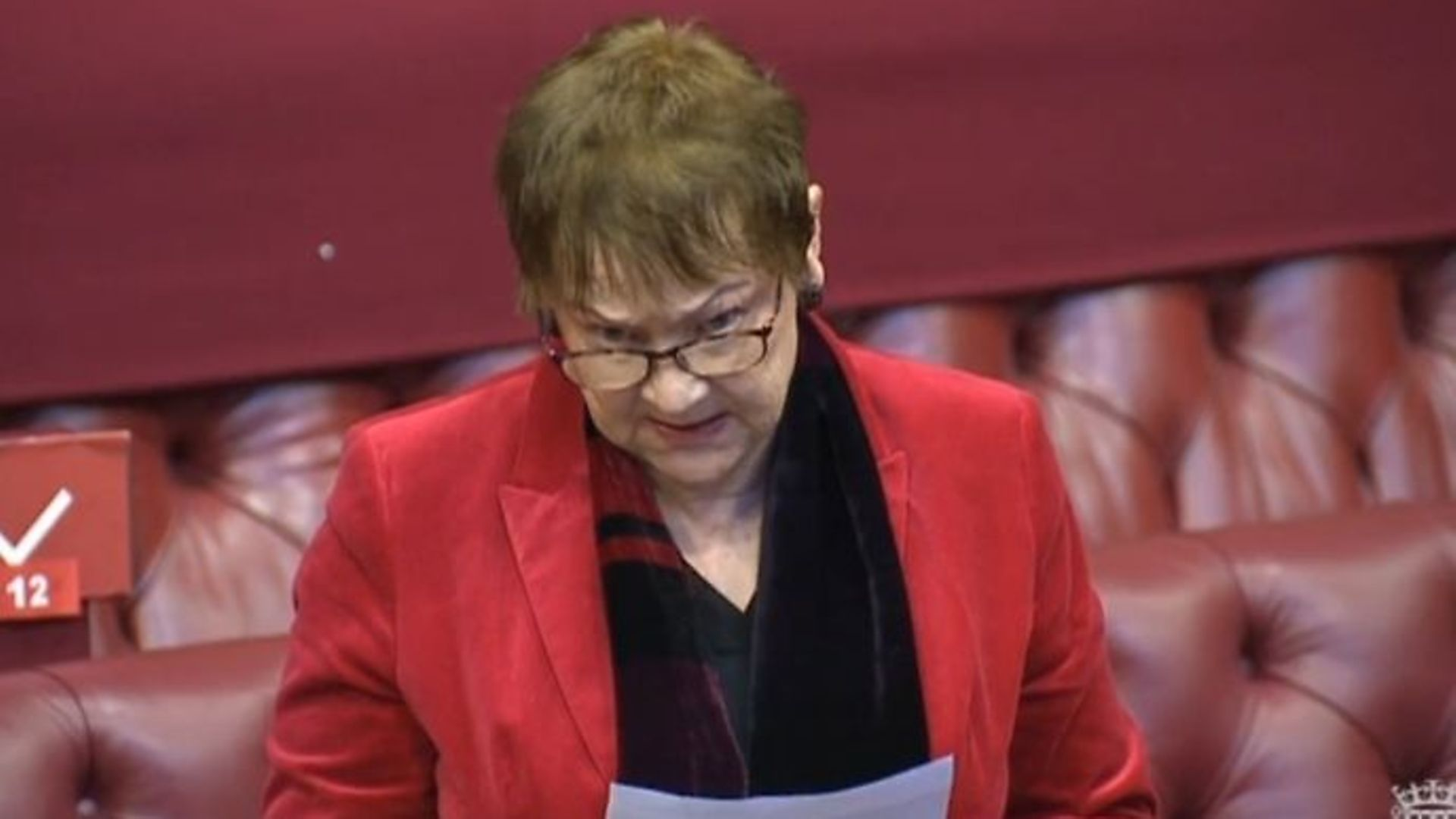 Liberal Democrat Baroness Ludford speaking in House of Lords - Credit: Parliamentlive.tv