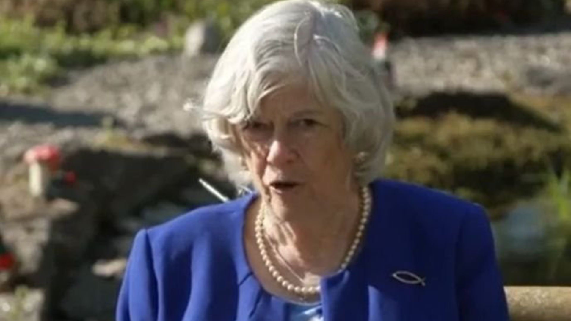 Ann Widdecombe has cancelled her National Trust membership in protest at the body's 'woke games'. - Credit: Archant