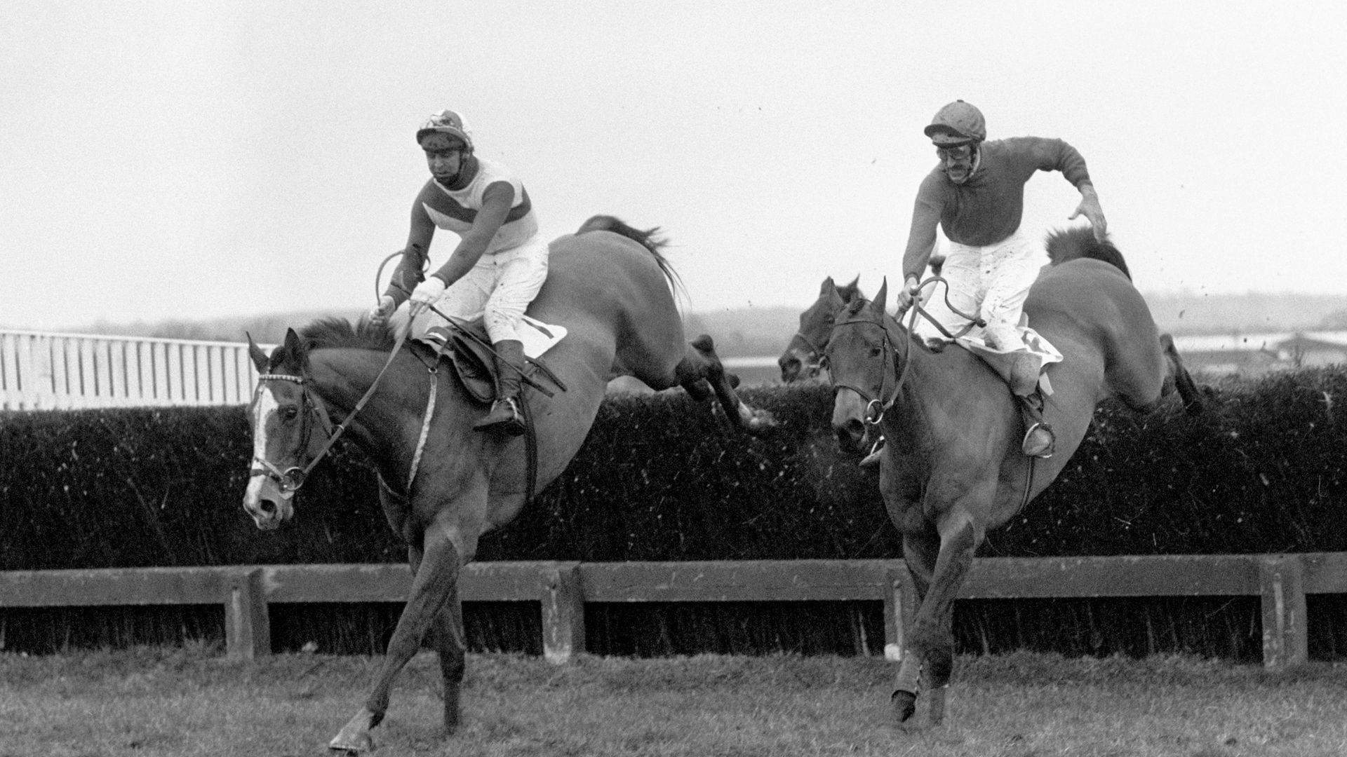 The Duke of Alburquerque (right) on Nereo in 1974 - Credit: PA Archive/PA Images