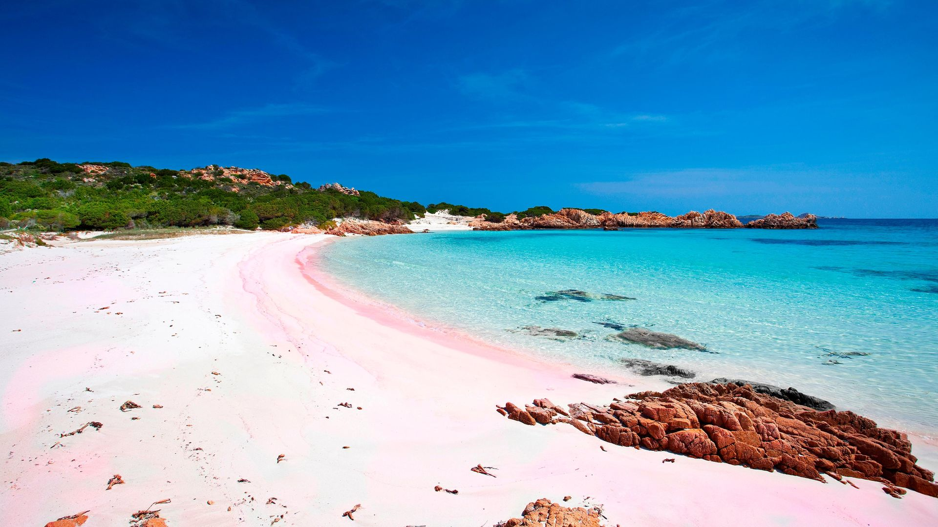 Budelli island, off Sardinia, where Mauro Marandi has lived alone for the past 30 years - Credit: Photo by: Luca Picciau/REDA&CO/Universal Images Group via Getty Images