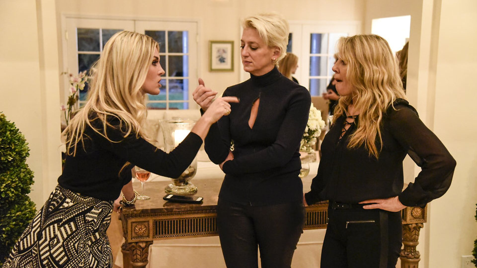 Things get heated at a house party in the Hamptons thrown by Ramona (right), in a scene from Real Housewives of New York, as one of her guests makes a point - Credit: Bravo